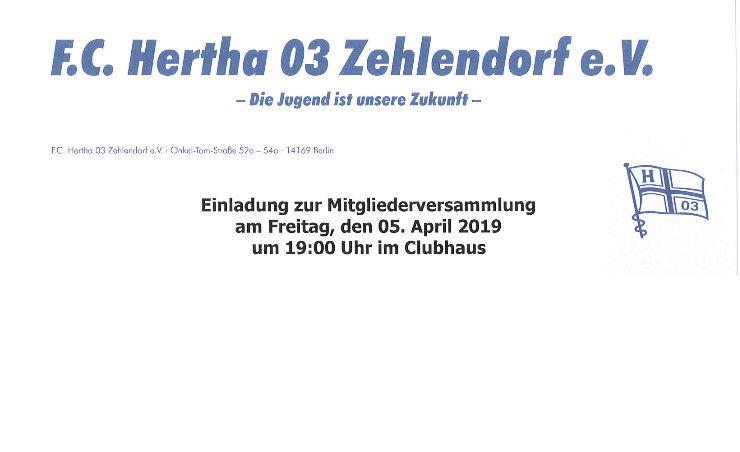 Fc Hertha 03 Zehlendorf Berlin Die Jugend Ist Unsere Zukunft
